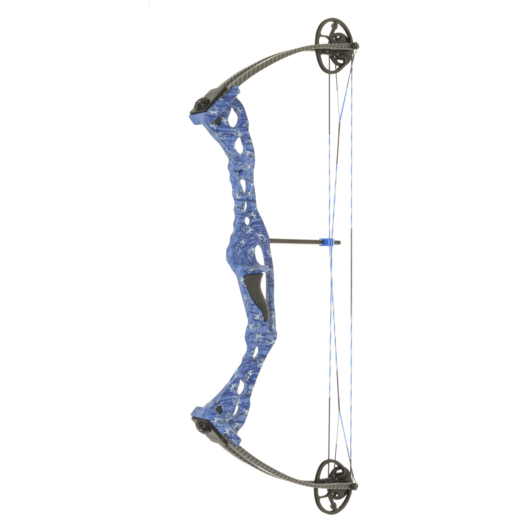 Sand shark recurve bowfishing bow for Compound bow fishing