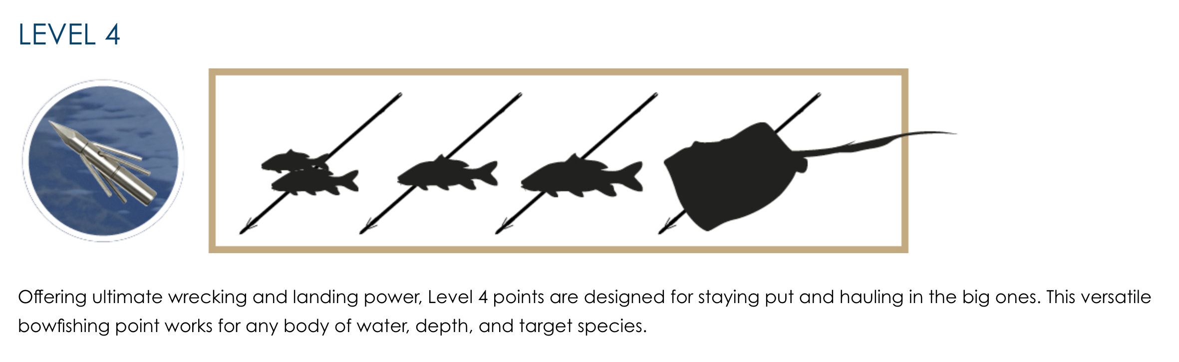 Fin-Finder Bowfishing Point - Level 4 Guide