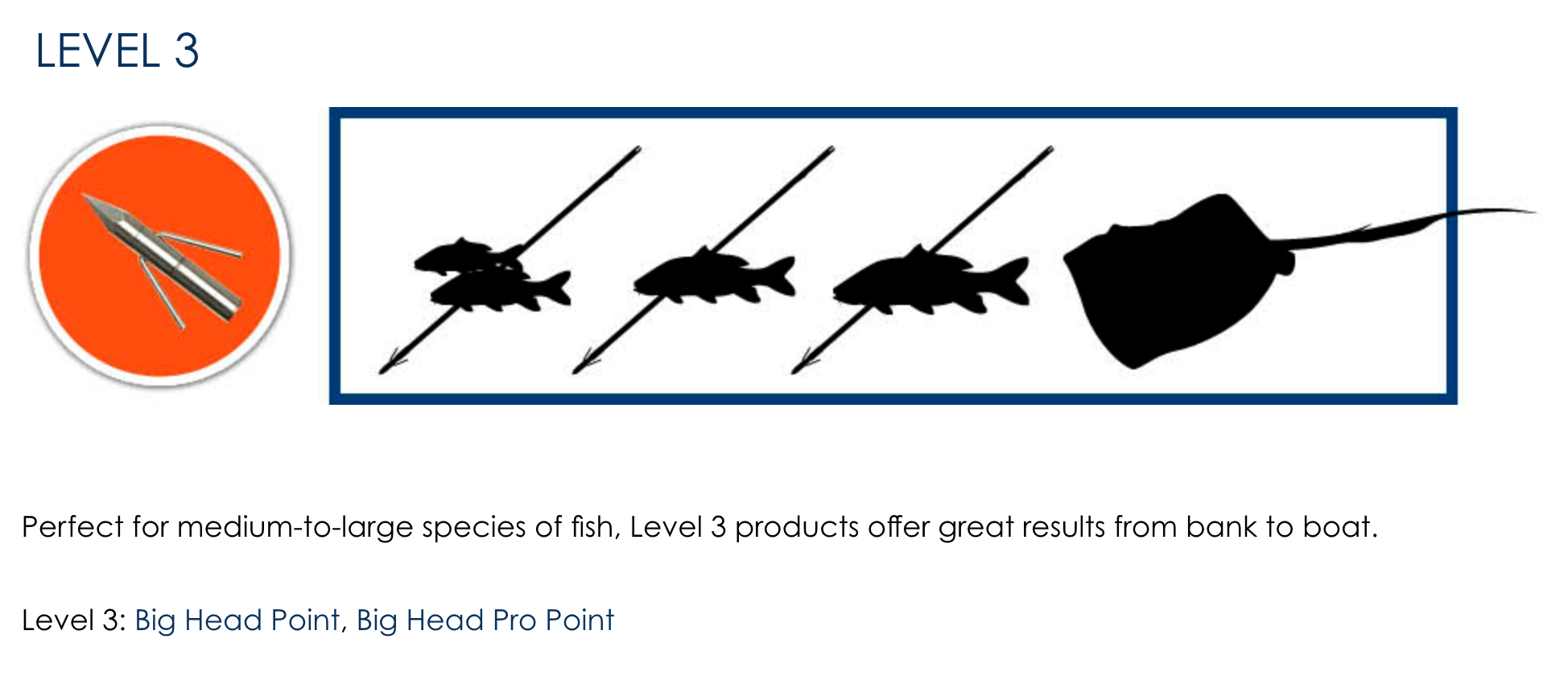 Fin-Finder Level 3 Bowfishing Point, Bowfishing Point