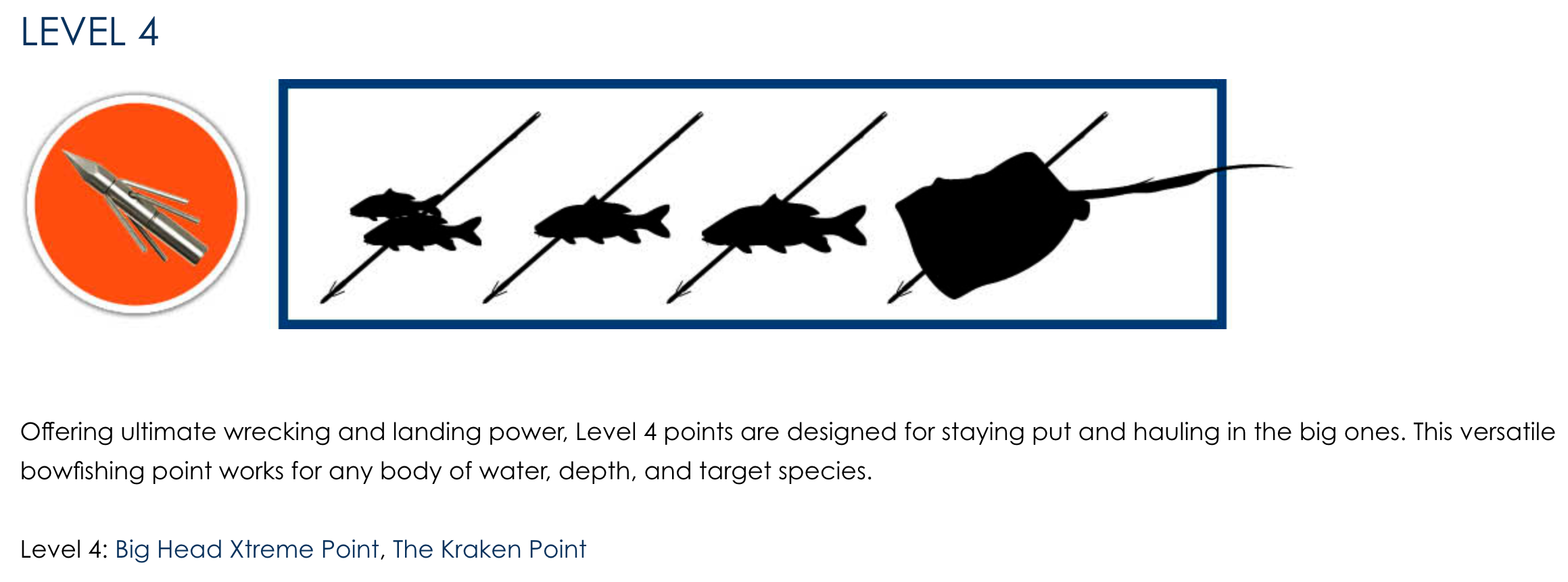 Fin-Finder Level 4 Bowfishing Point, Bowfishing Point