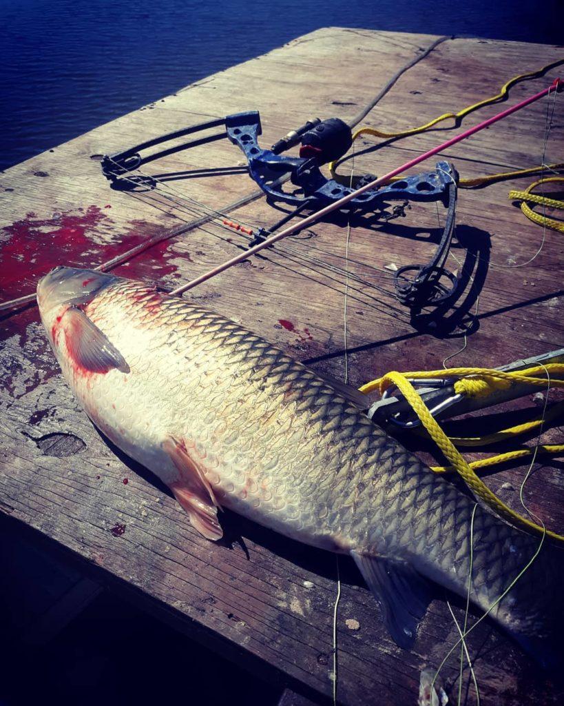 Cleaning your Gear –Bowfishing Equipment Maintenance